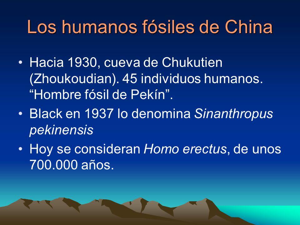 Los humanos fósiles de China
