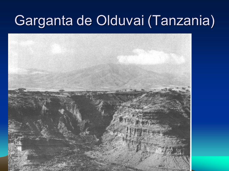 Garganta de Olduvai (Tanzania)