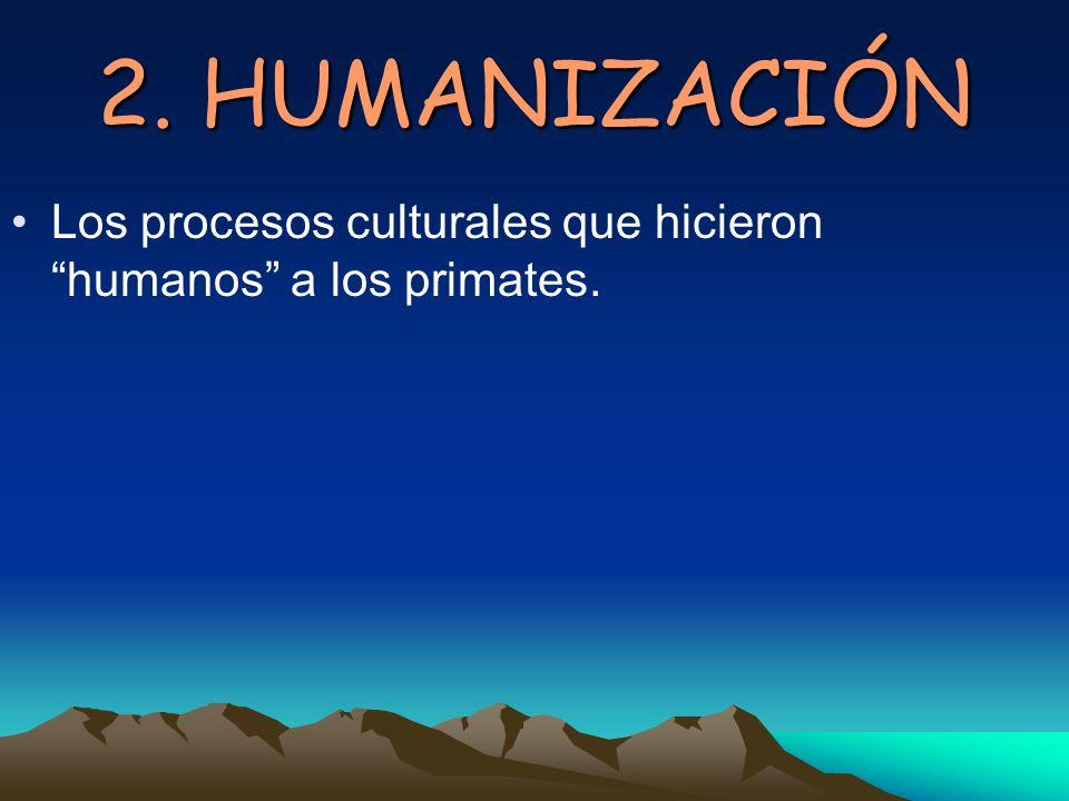 2. HUMANIZACIÓN Los procesos culturales que hicieron humanos a los primates.