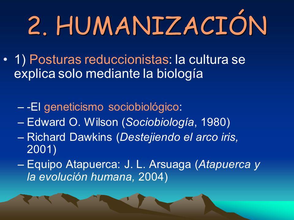 2. HUMANIZACIÓN 1) Posturas reduccionistas: la cultura se explica solo mediante la biología. -El geneticismo sociobiológico: