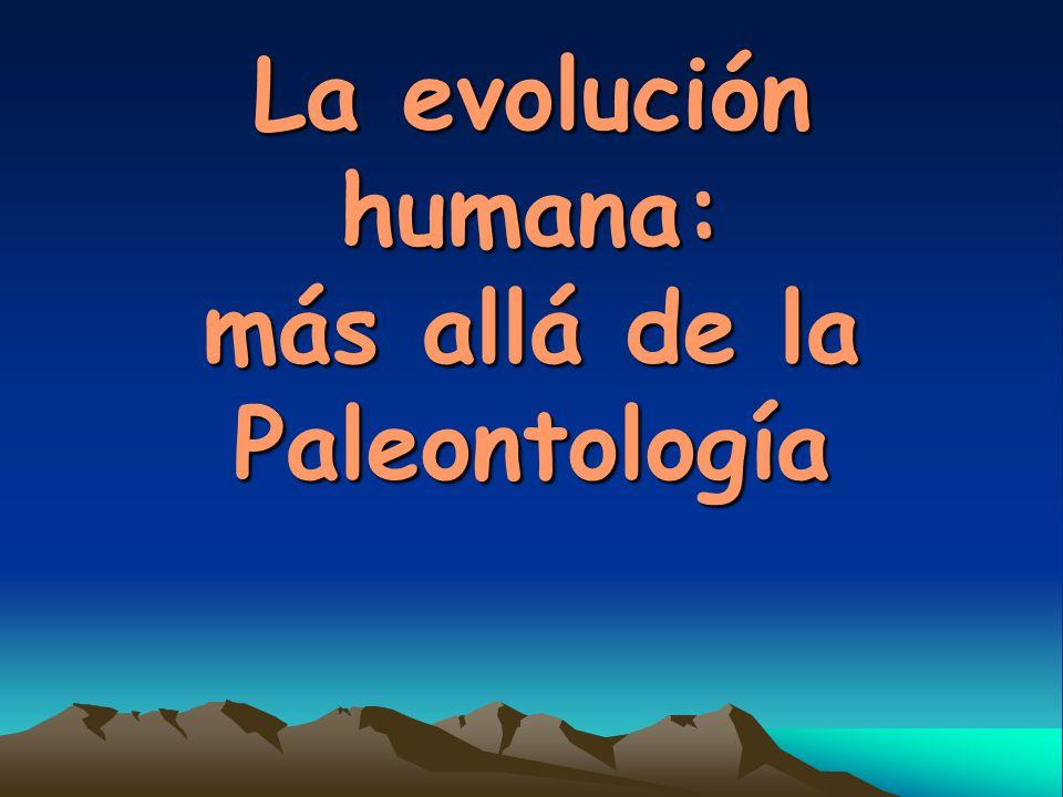 La evolución humana: más allá de la Paleontología