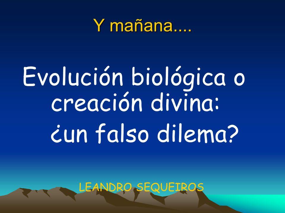 Evolución biológica o creación divina: ¿un falso dilema
