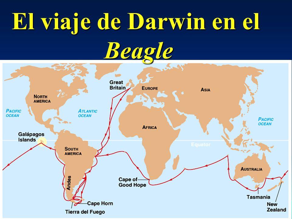 El viaje de Darwin en el Beagle