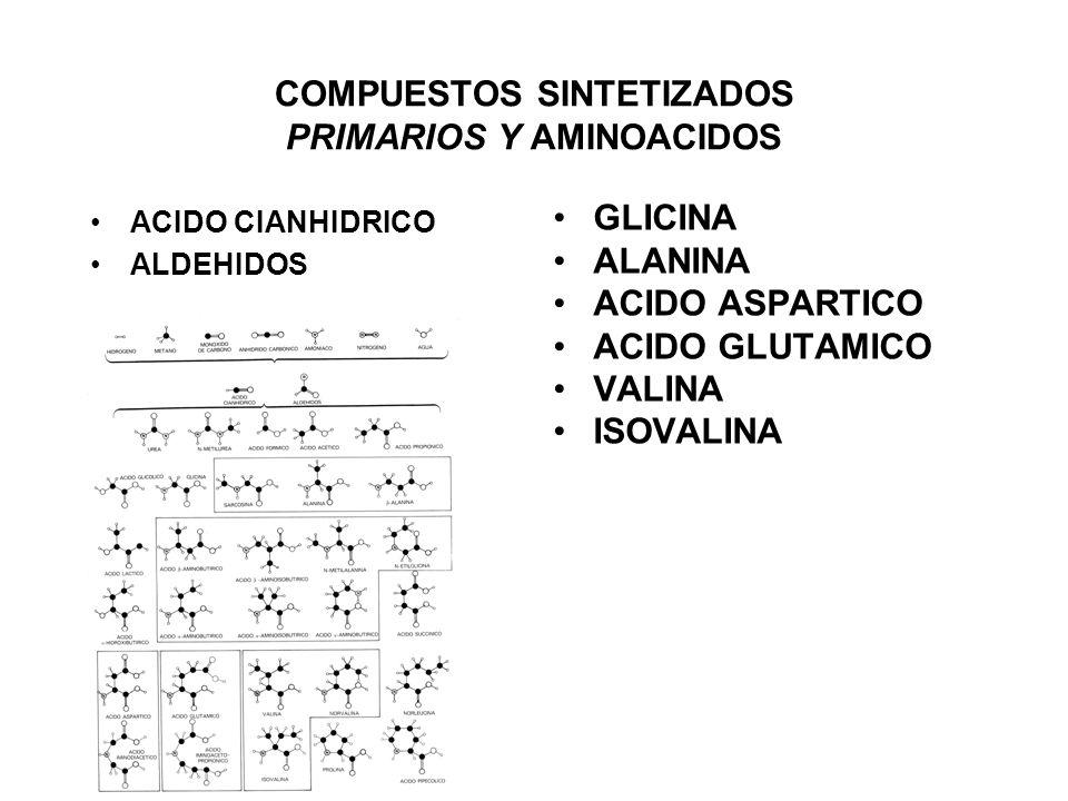 COMPUESTOS SINTETIZADOS PRIMARIOS Y AMINOACIDOS