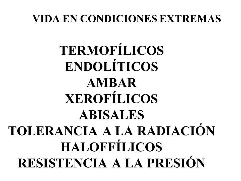 VIDA EN CONDICIONES EXTREMAS