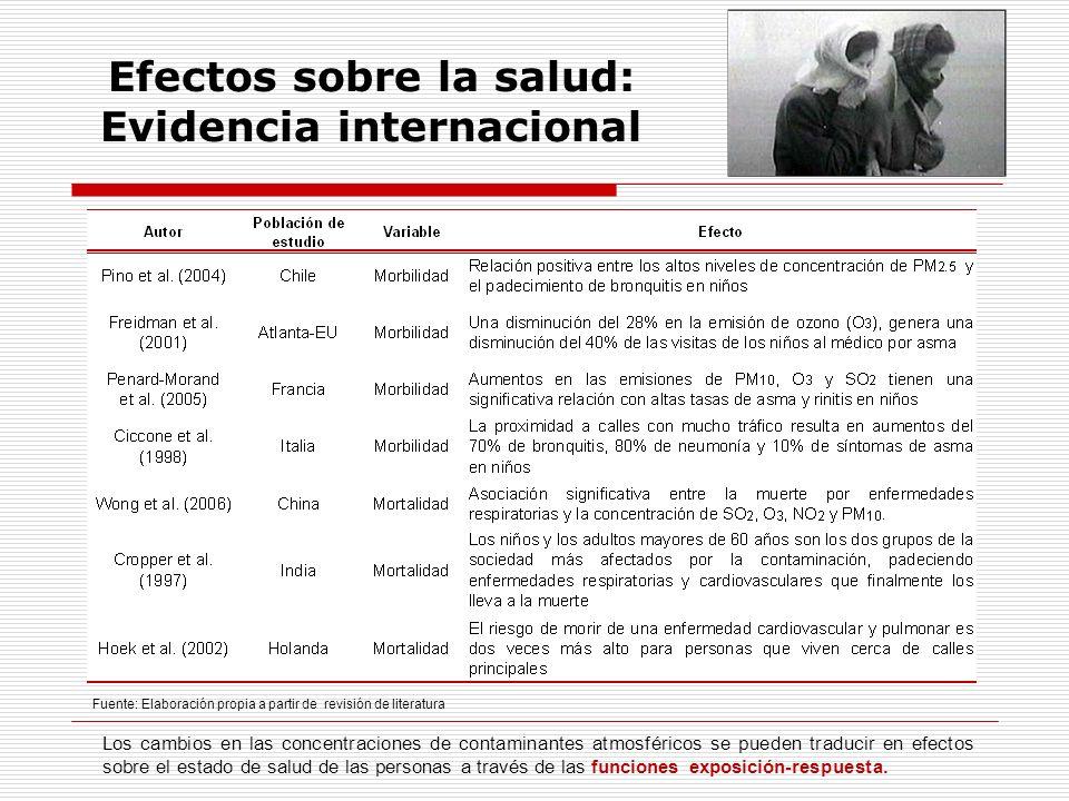 Efectos sobre la salud: Evidencia internacional