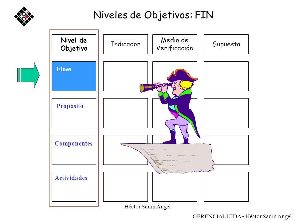 Niveles de Objetivos: FIN