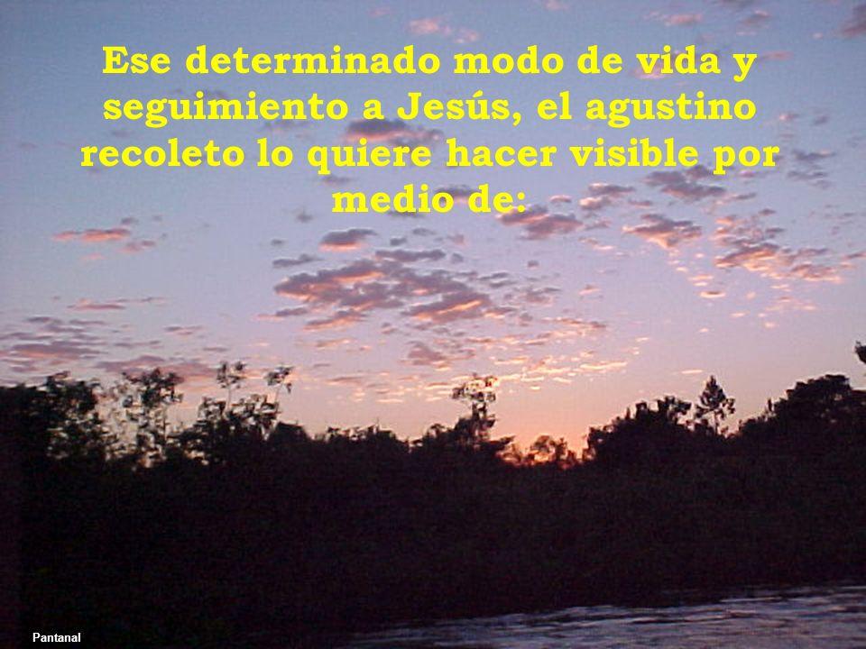 Ese determinado modo de vida y seguimiento a Jesús, el agustino recoleto lo quiere hacer visible por medio de: