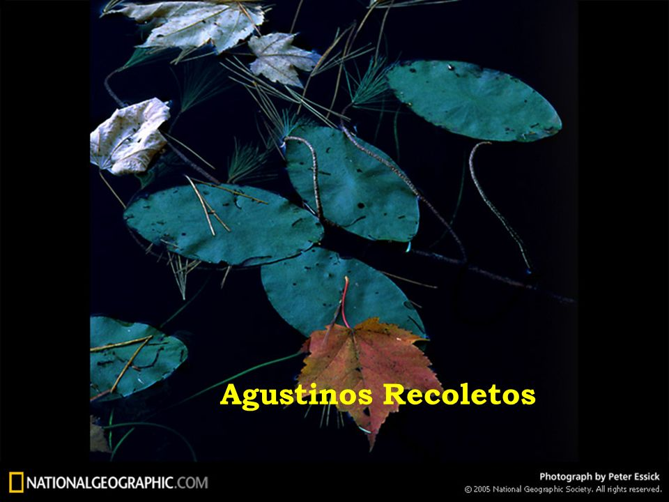 Agustinos Recoletos