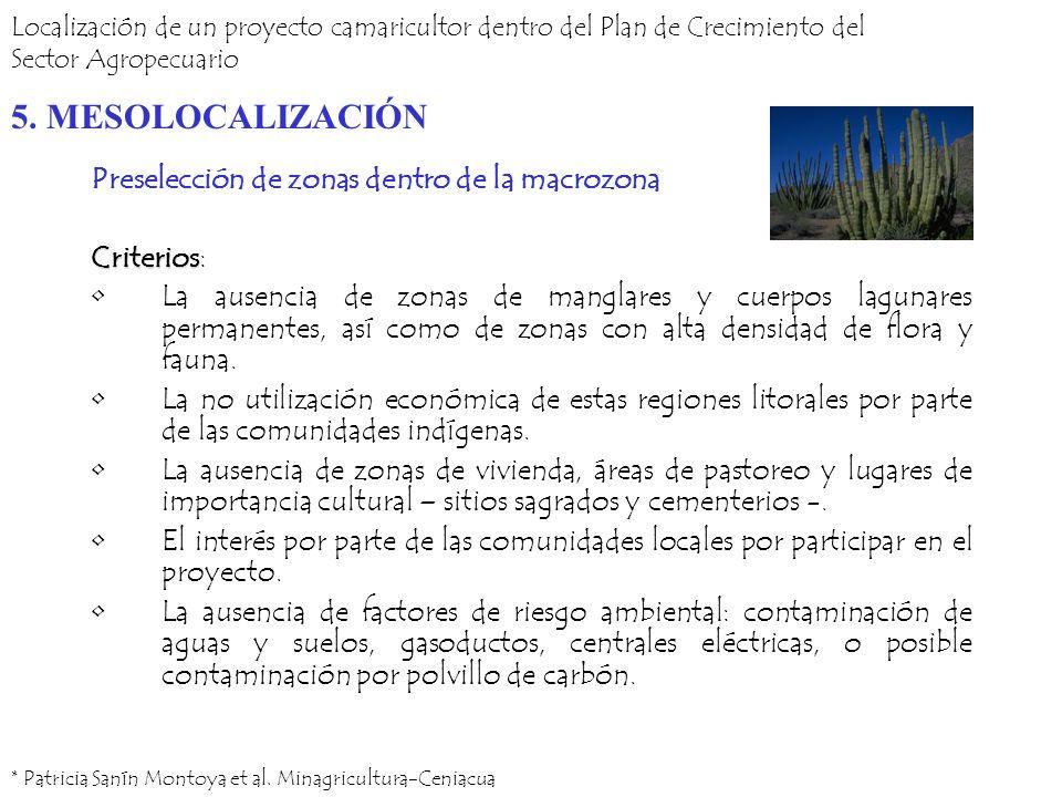5. MESOLOCALIZACIÓN Preselección de zonas dentro de la macrozona