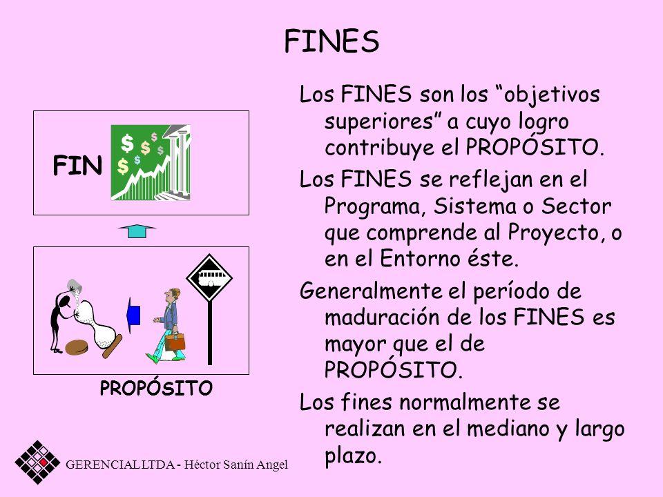 FINES Los FINES son los objetivos superiores a cuyo logro contribuye el PROPÓSITO.