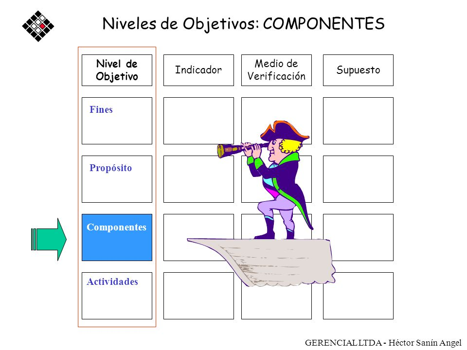 Niveles de Objetivos: COMPONENTES