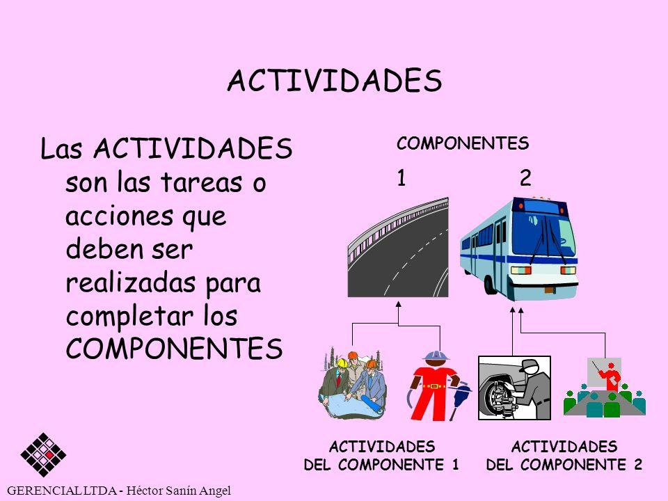 ACTIVIDADESLas ACTIVIDADES son las tareas o acciones que deben ser realizadas para completar los COMPONENTES.