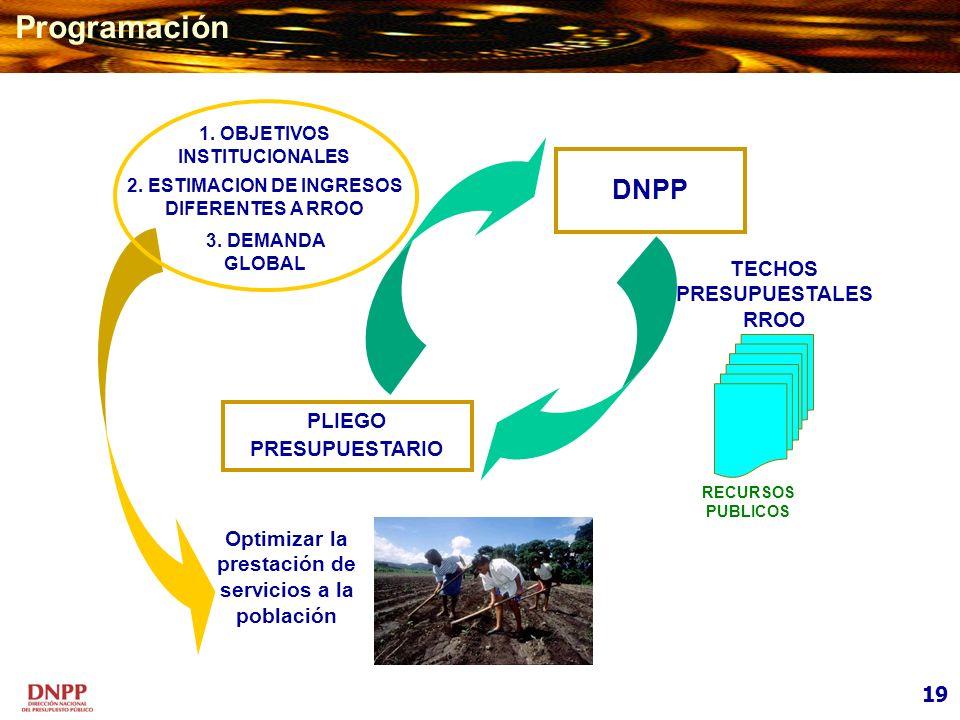Programación DNPP TECHOS PRESUPUESTALESRROO PLIEGO PRESUPUESTARIO