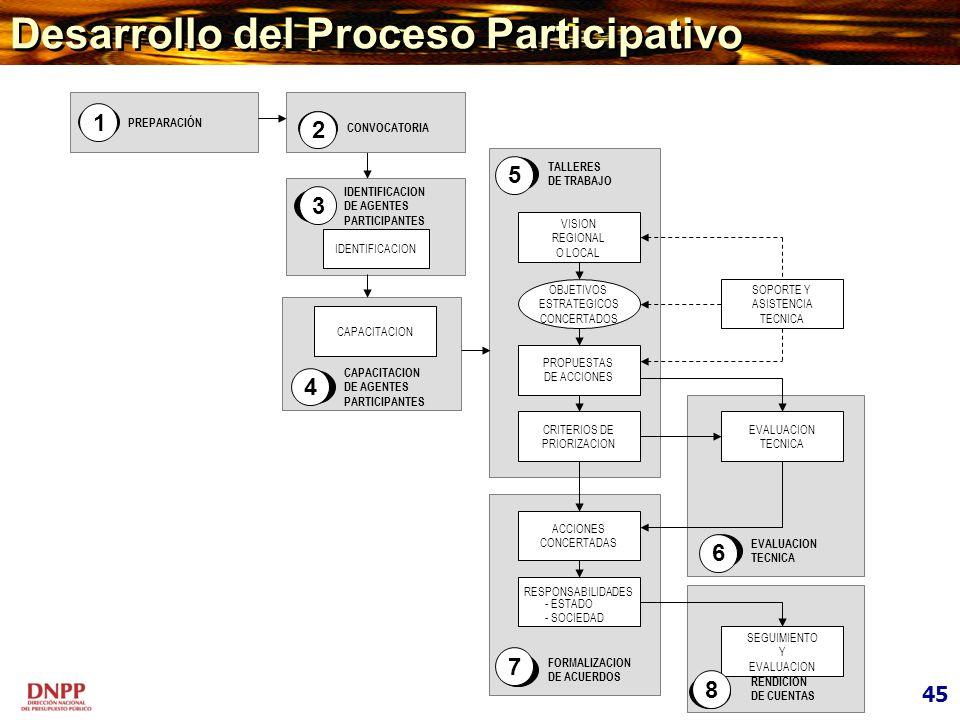 Desarrollo del Proceso Participativo