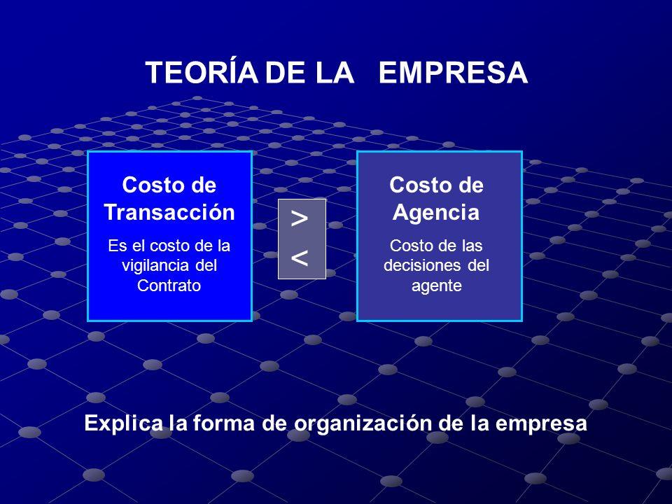 Explica la forma de organización de la empresa