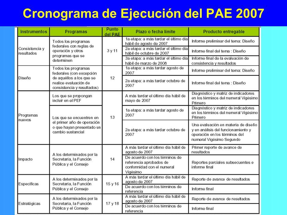 Cronograma de Ejecución del PAE 2007