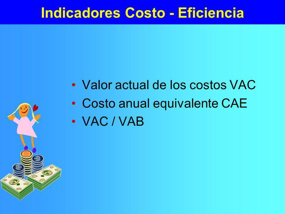 Indicadores Costo - Eficiencia