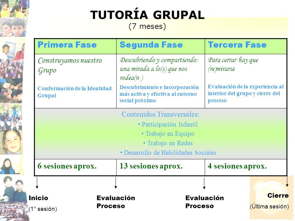 TUTORÍA GRUPAL (7 meses)