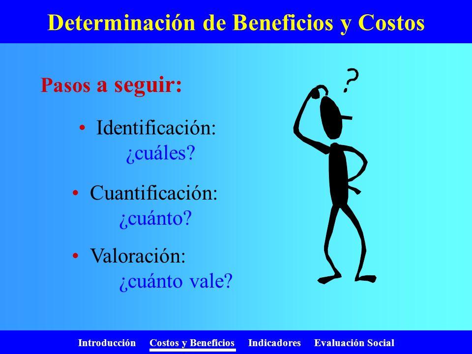 Determinación de Beneficios y Costos
