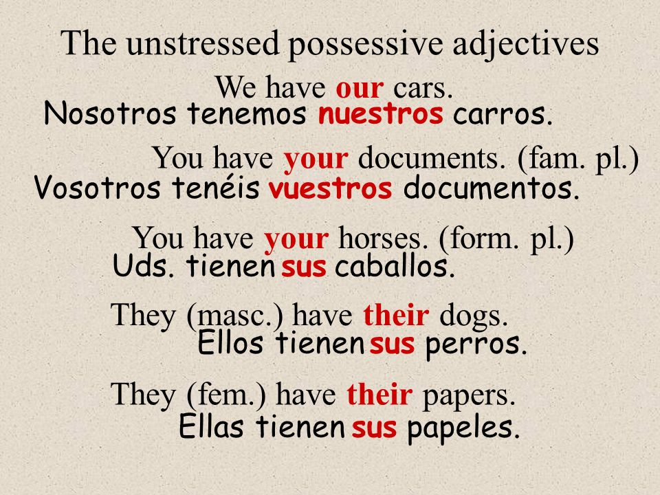 The unstressed possessive adjectives