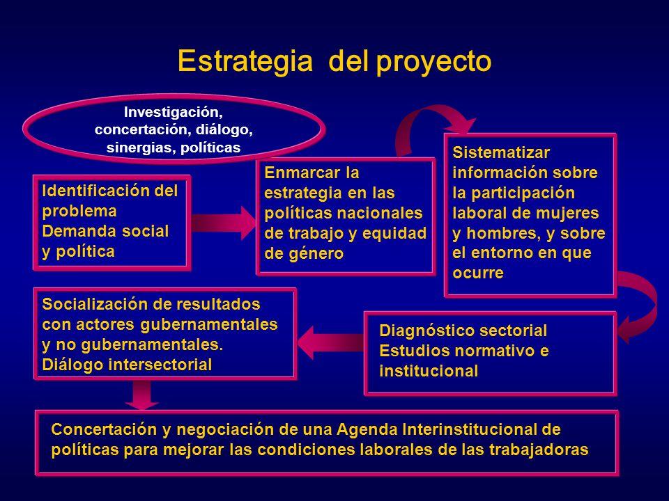 Estrategia del proyecto
