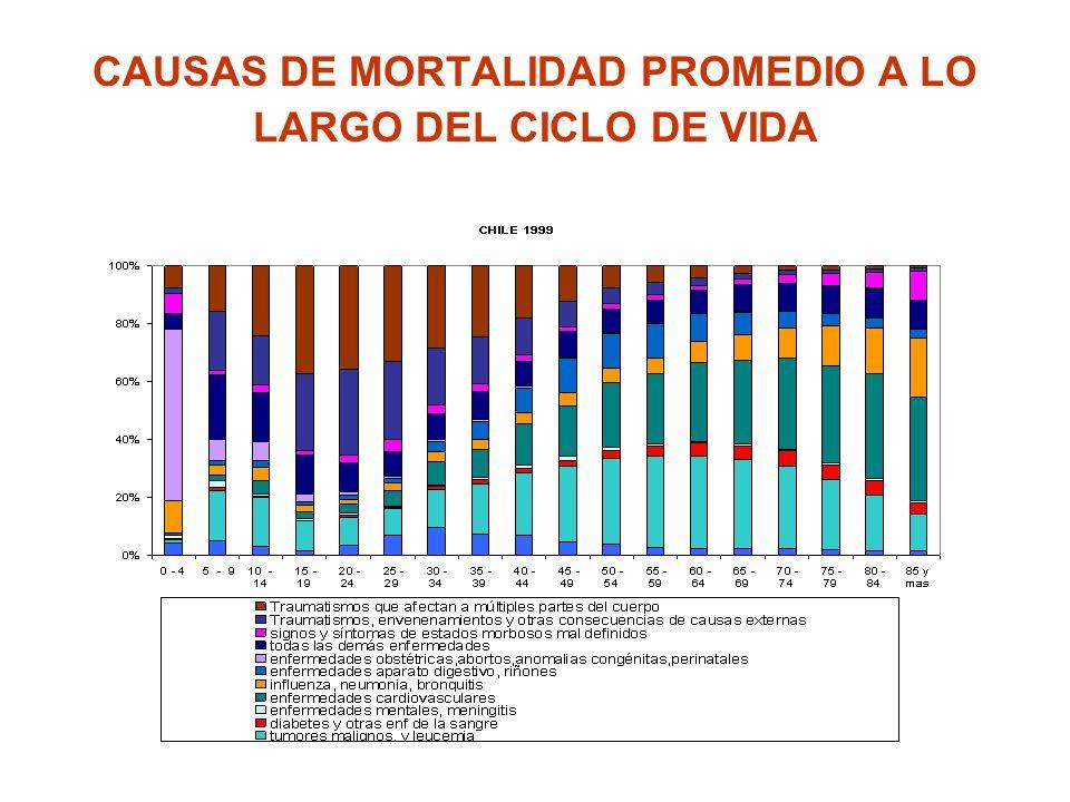 CAUSAS DE MORTALIDAD PROMEDIO A LO LARGO DEL CICLO DE VIDA