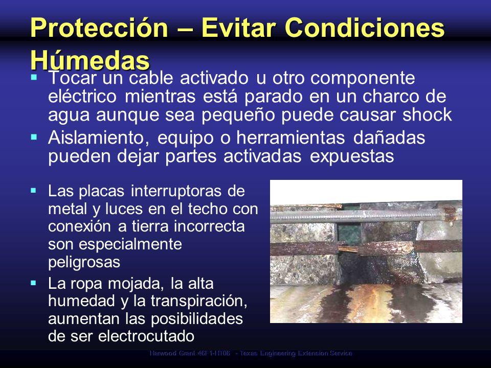 Protección – Evitar Condiciones Húmedas