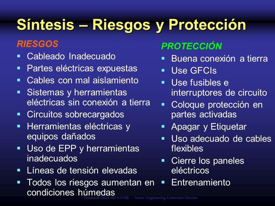 Síntesis – Riesgos y Protección