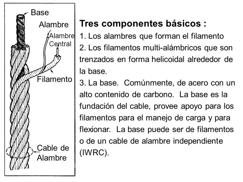 Tres componentes básicos :