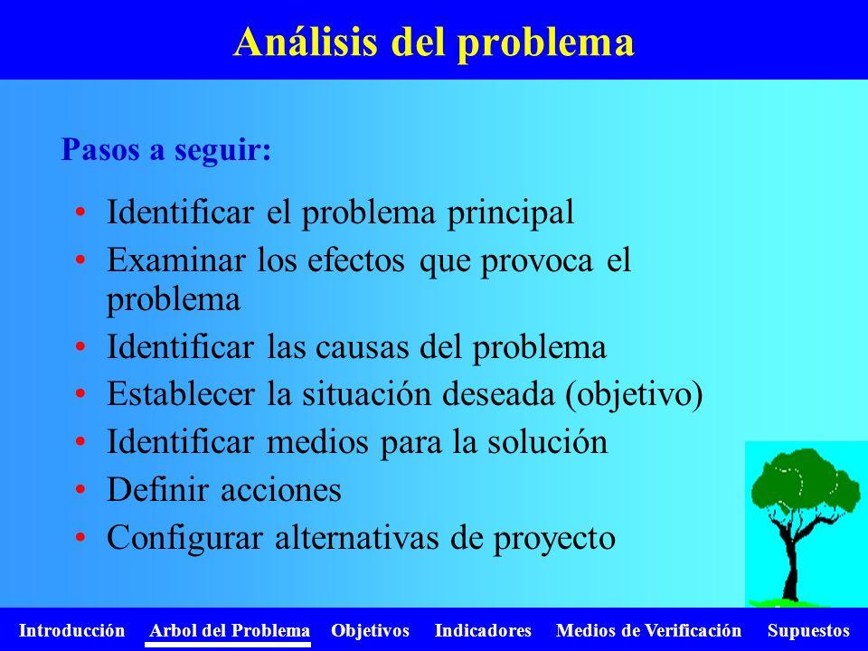 Análisis del problema Identificar el problema principal