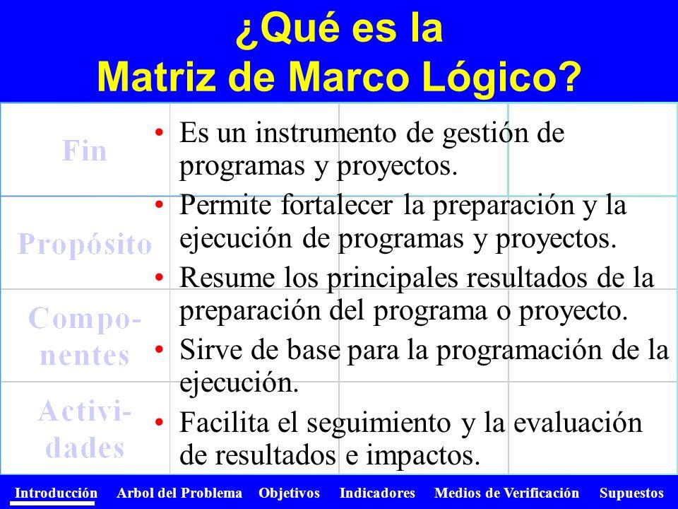 ¿Qué es la Matriz de Marco Lógico