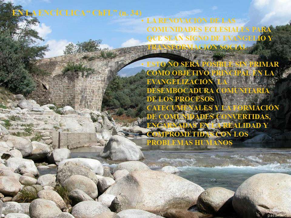 EN LA ENCÍCLICA ChFL (n. 34)