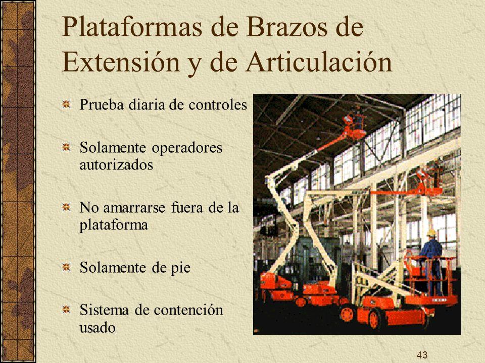 Plataformas de Brazos de Extensión y de Articulación