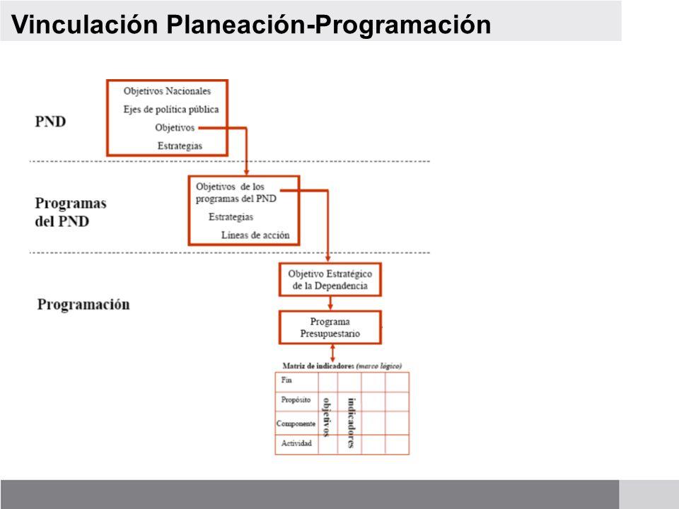 Vinculación Planeación-Programación