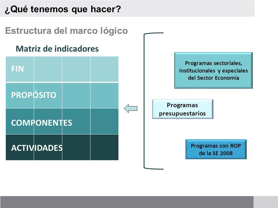 Programas presupuestarios Programas con ROP de la SE 2008