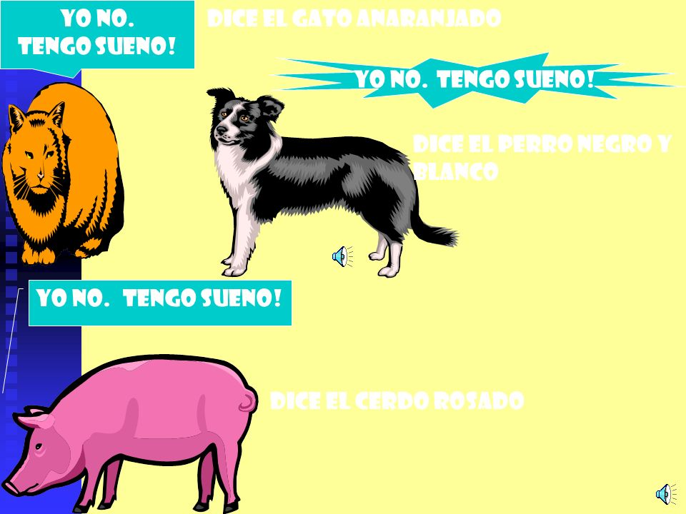 YO NO. TENGO SUENO! DICE EL GATO ANARANJADO. Yo no. TENGO SUENO! DICE EL PERRO NEGRO Y BLANCO. YO NO. TENGO SUENO!