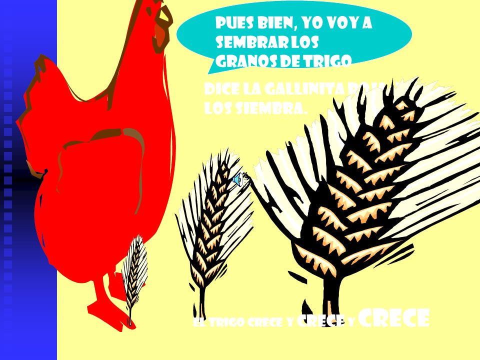 Pues bien, yo voy a sembrar los granos de trigo