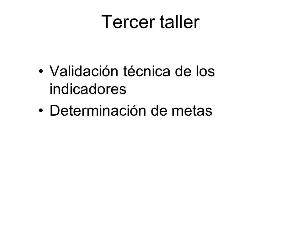 Tercer taller Validación técnica de los indicadores
