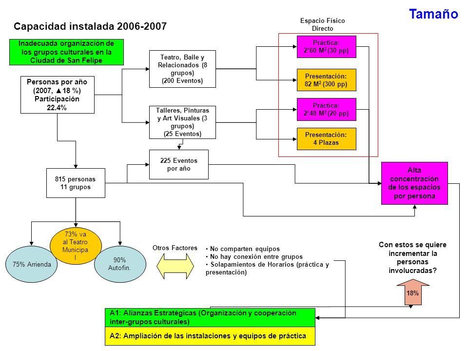 Tamaño Capacidad instalada 2006-2007