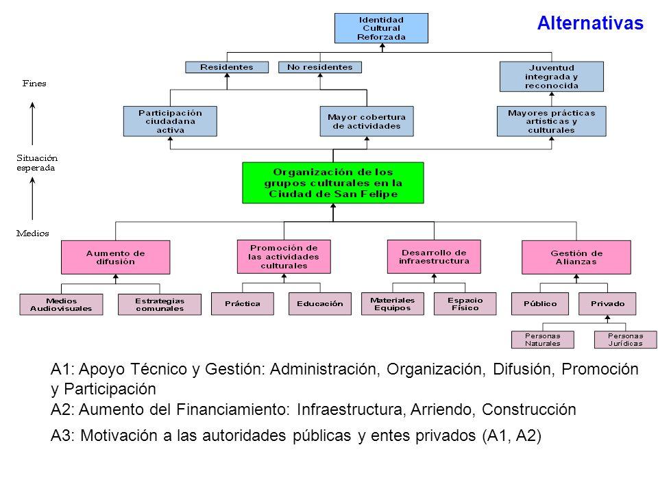 Alternativas A1: Apoyo Técnico y Gestión: Administración, Organización, Difusión, Promoción y Participación.