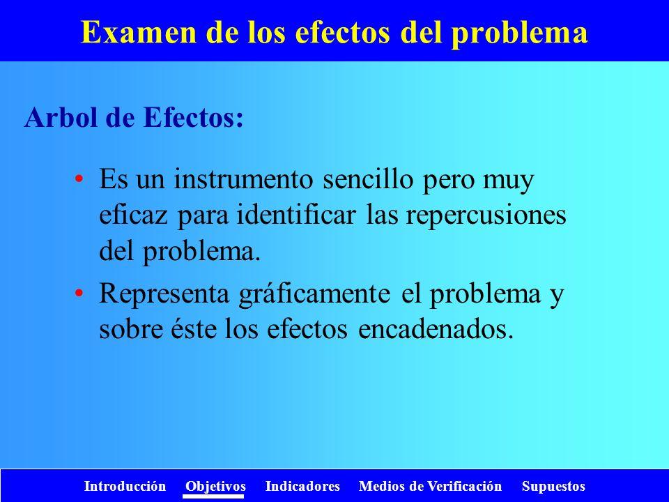 Examen de los efectos del problema
