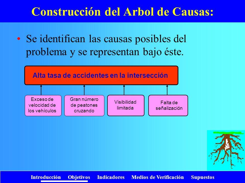Construcción del Arbol de Causas: