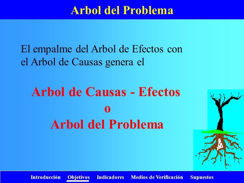 Arbol de Causas - Efectos