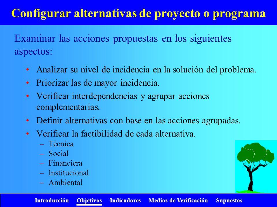 Configurar alternativas de proyecto o programa