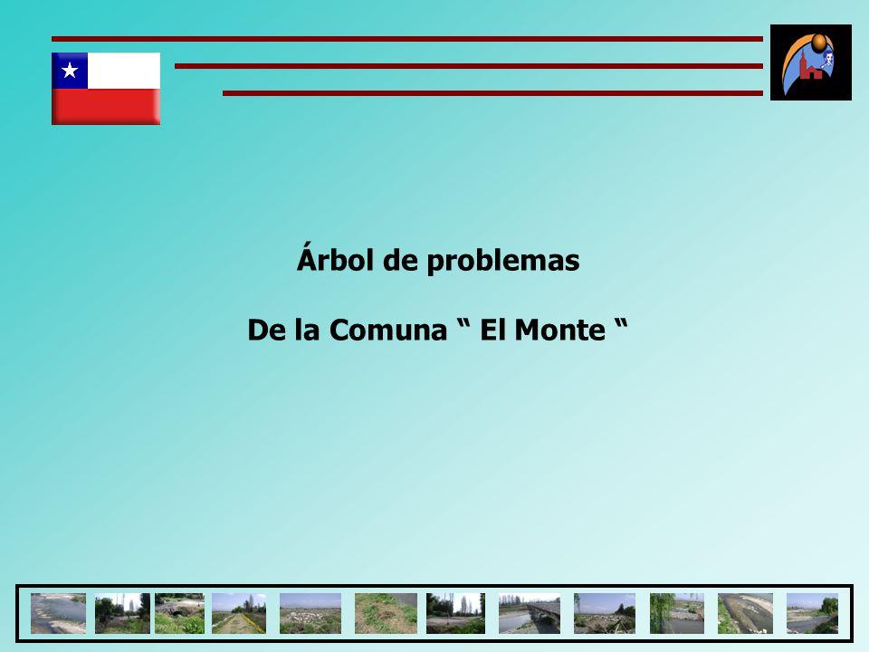 Árbol de problemas De la Comuna El Monte