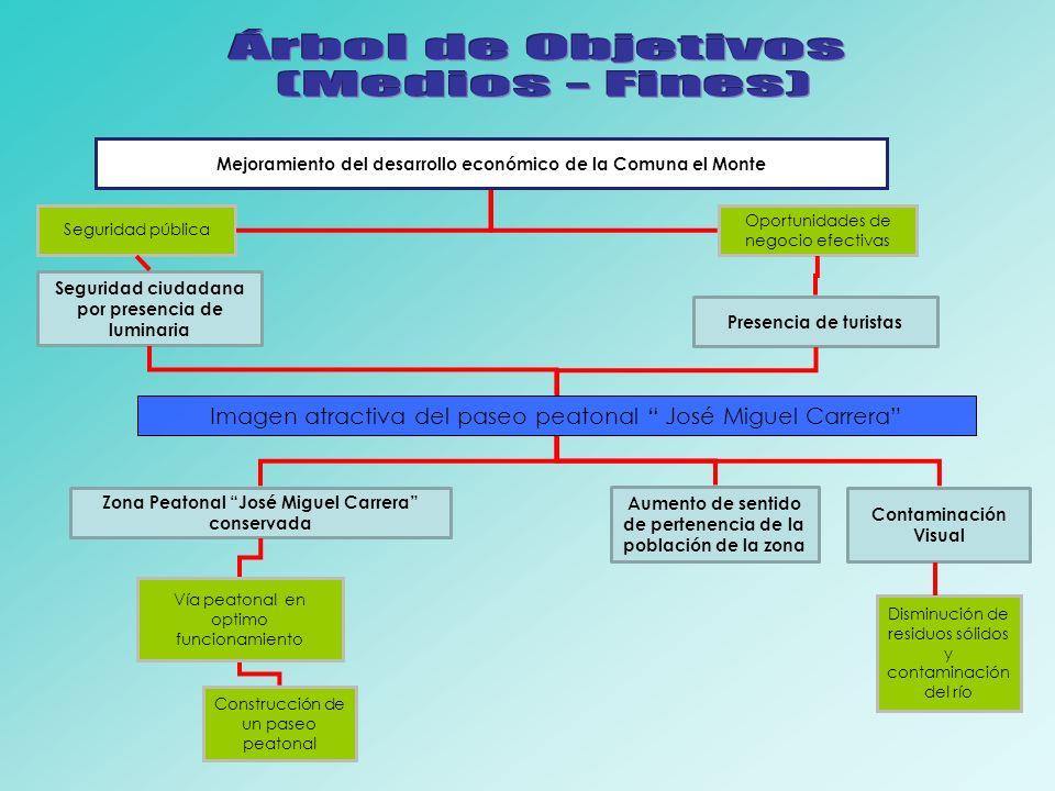 Árbol de Objetivos (Medios - Fines)