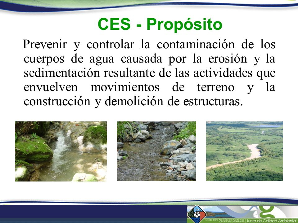 CES - Propósito