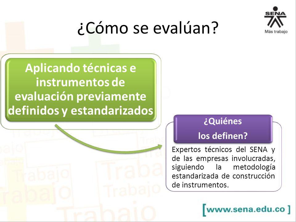 Aplicando técnicas e instrumentos de evaluación previamente definidos y estandarizados