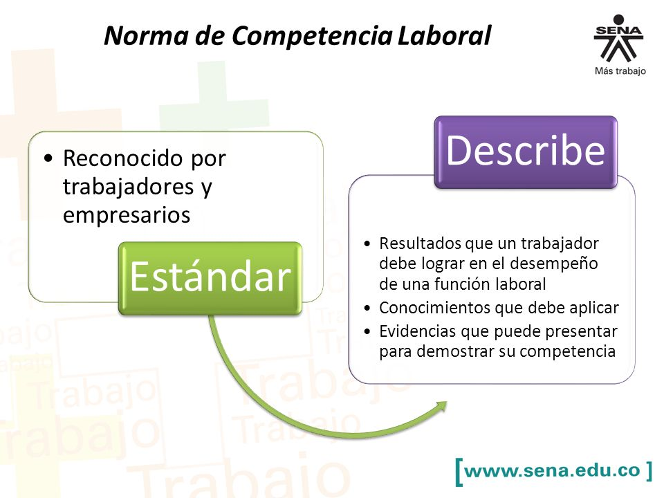 Describe Estándar Norma de Competencia Laboral